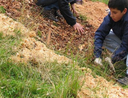 Livigno Family&Kids ART WORKSHOP – LET'S DRAW WITH SAWDUST, BARK AND…