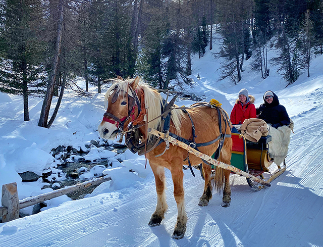 Livigno In Family SLED TOUR