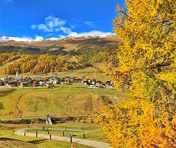 Livigno News 5 UNMISSABLE TRAILS FOR DISCOVERING THE COLOURS  AND...