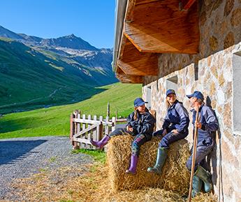 Livigno News FARMER FOR A DAY IN THE ALPS OF LIVIGNO