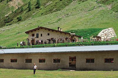 Livigno ESSEN & NACHTLEBEN Alpe Mine